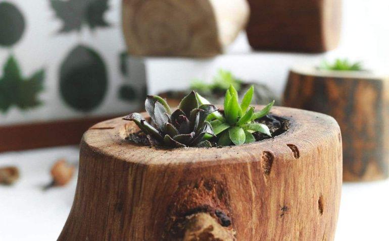 Деревянный горшок для цветка
