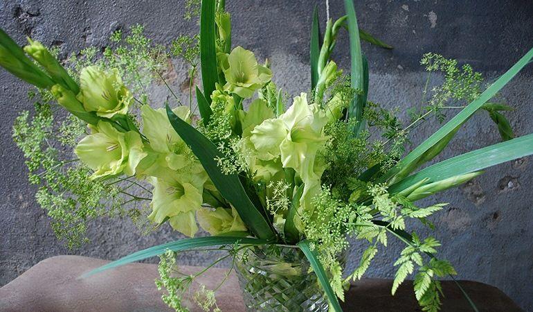 Зеленый букет гладиолусов