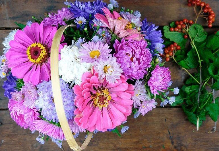 Цветы ягоды калины для букета