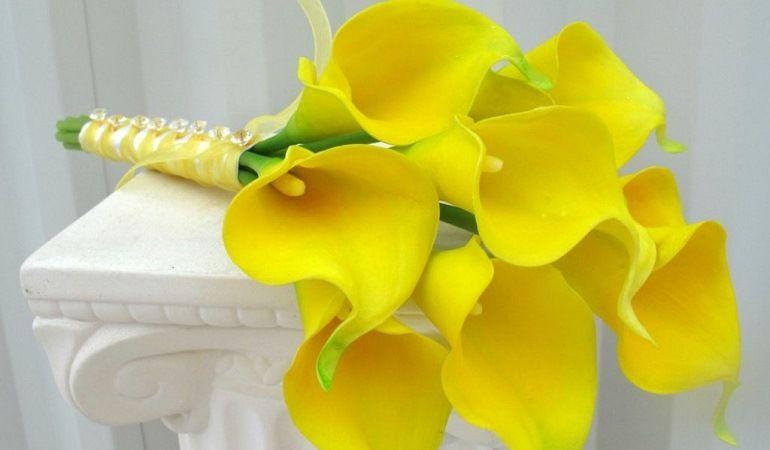 Желтые каллы в букете невесты