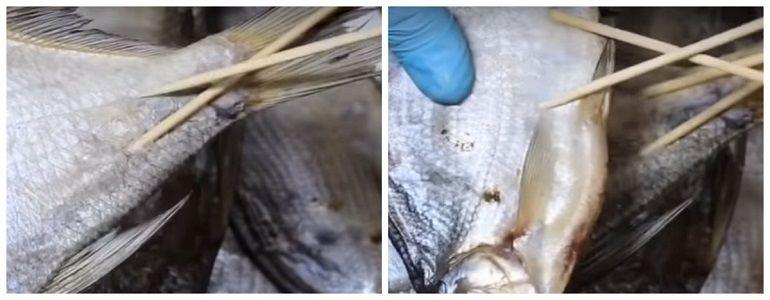 Вяленые рыбки на шпажках