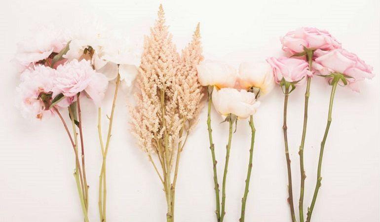 Очистить стебли цветов