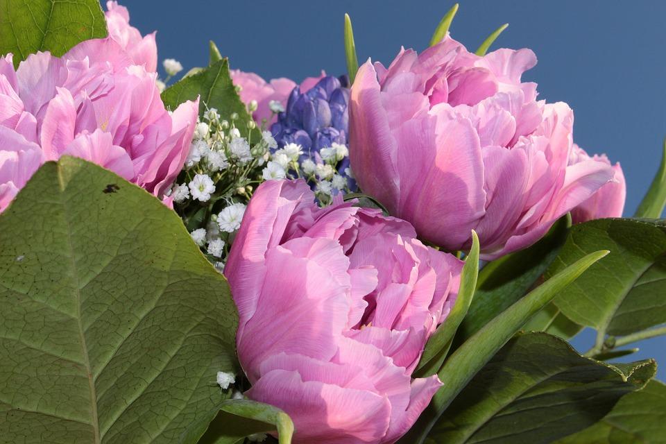 Розовые тюльпаны для свадебного букета