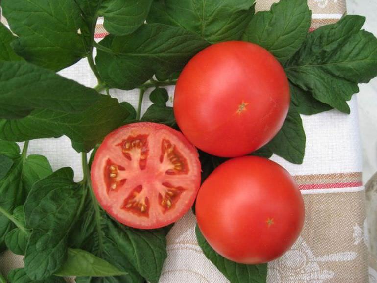 Отбор томатов под семена