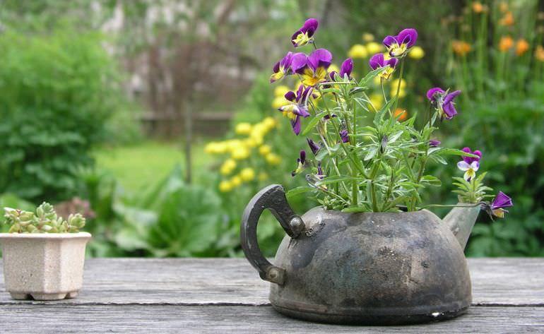 Клумба в чайнике