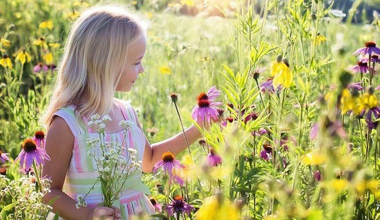 Девочка на поле