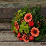 Какие цветы цветут в саду осенью