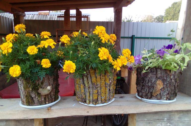 Цветы в горшках из дерева