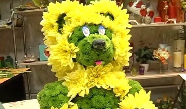 Желтые и зеленые хризантемы