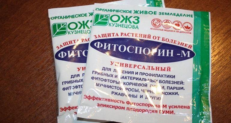 Противогрибковые средства