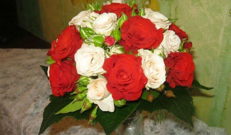 Ягоды гиперикума розы