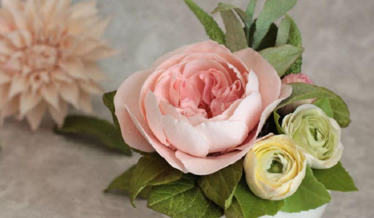 Классификация пионовидных роз