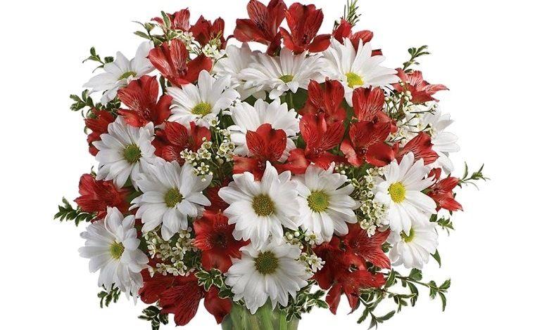 Хризантемы, красные альстремерии