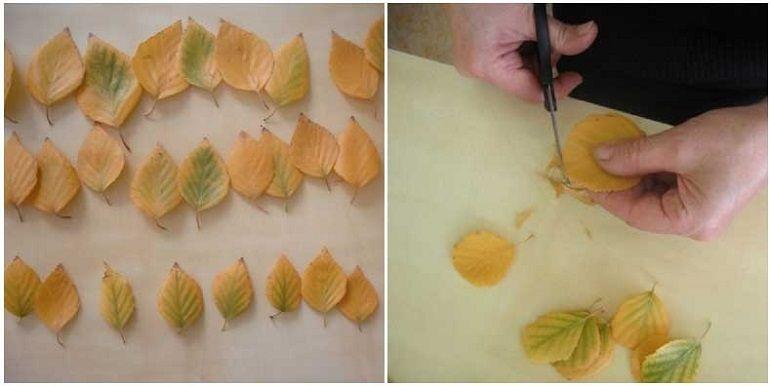 Подготовить листья