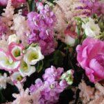 Разновидности цветов для букетов