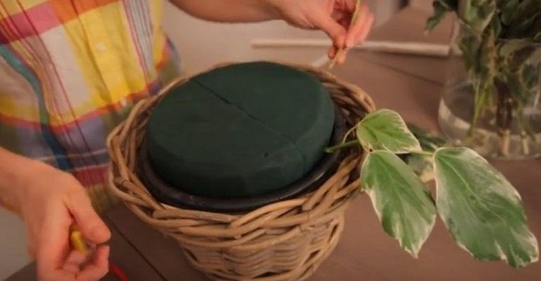 Сборка зелени