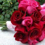 Красивые букеты из живых роз