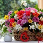 Роскошные букеты цветов