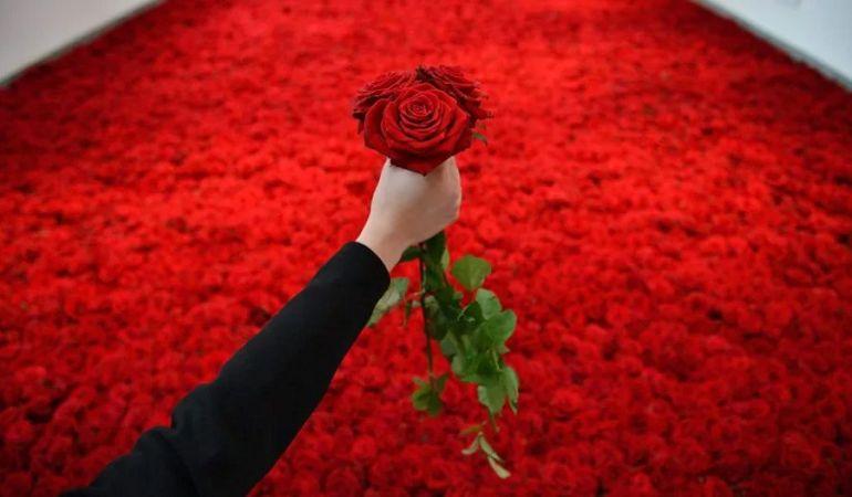Гигантские букеты из роз