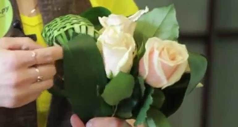 Роза зелень