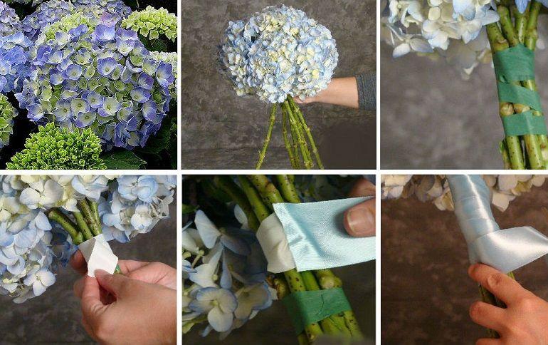 Голубая гортензия для свадебного букета