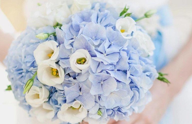 Голубые цветы для букета