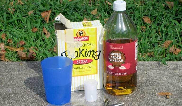 Уксус и сода от слизней