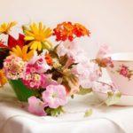Как сказать « С добрым утром!» букетом цветов