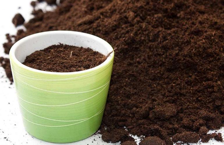 Органические удобрения для домашних цветов