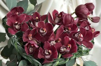 Мастер-класс по сборке сердца из орхидей на 14 февраля